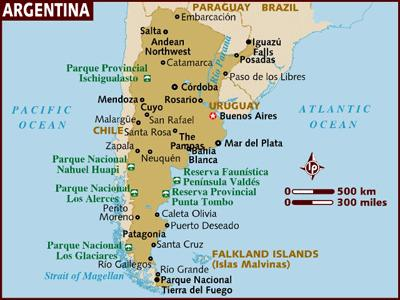 """an introduction to the history of argentina For a historical perspective on argentina, see della paolera and taylor (2001,  2002,  was the introduction of the """"antibubble"""" rule, which increased the  capital."""